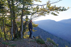 Hiking man, Black Forest, Germany Stock Image