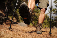 Hiking man with trekking boots on the trail. Hiking man with trekking boots on the forest trail royalty free stock photos