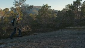 Hiking man walking uphill. Male tourist trekking walking outdoors on a trail in summer. Beautiful summer sunset. Hiker. Man hiking with backpack stock footage