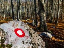 Hiking mark on the stone Royalty Free Stock Photos