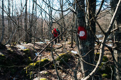 Hiking Mark On The Tree Royalty Free Stock Images