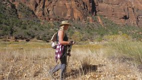 Active Woman With Trekking Sticks Hiking In Zion Park In The Background Rocks. Hiking mature women with trekking poles, tied shirt on the belt, hat and backpack stock video footage