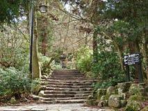 Hiking at Miyajima Island, Hiroshima, Japan Stock Photo
