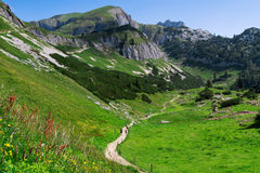 Hiking in the mountains. Austria travel, Achensee Area, Tirol Royalty Free Stock Images
