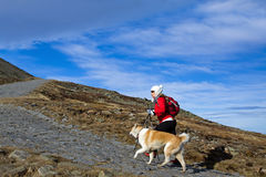 Hiking in mountains with a dog Royalty Free Stock Photography