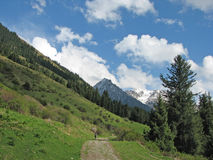 Hiking in mountains of Kyrgyzstan. Unspoiled nature with green and snow-covered mountains in Kyrgyzstan Stock Photos