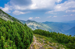 Hiking in the mountains in the summer Stock Photography