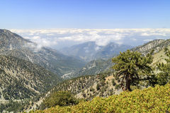 Hiking in the Mt. Baldy Trail. At Los Angeles, California Royalty Free Stock Images