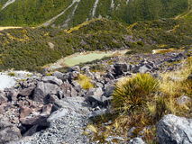 Hiking, Mt. Cook National Park, New Zealand Stock Image