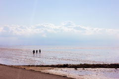 Hiking in the Mudflat Stock Image