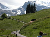 Hiking in Murren Country. A view of the some hikers along a trail leading from Murren, Switzerland to the Breithorn mountains Royalty Free Stock Photography