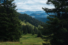 Hiking on the Nagelfluhkette in the German alps Stock Photos