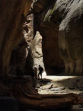 Hiking the Narrows in Zion National Park Royalty Free Stock Images