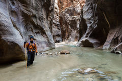 Hiking the Narrows in Zion NP Stock Photos