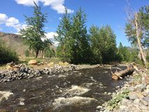 Hiking near a beautiful scenic Kamloops stream. Hiking near a Kamloops river Stock Images