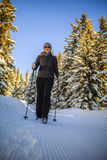 Hiking with nordic walking poles on path. Royalty Free Stock Photography