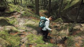 Hiking with Obstacles. Fair-haired, athletic boy encountering number of obstacles as hiking, overcoming sharp rocks and heavy, wooden bricks on his way, concept stock video footage