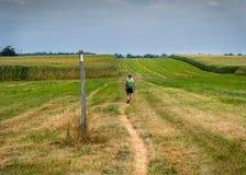 Hiking Through Open Corn Field Stock Photo