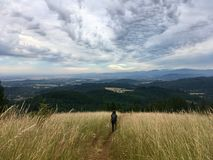 Adventures in the Mountains tall grasses and sky. Hiking in Oregon Royalty Free Stock Image