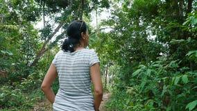 Woman walking through beautiful jungle. Hiking outdoors on nature  -  pretty woman walking through beautiful jungle stock video footage