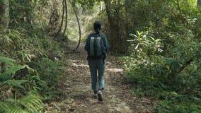 Woman walking through beautiful jungle. Hiking outdoors on nature - pretty woman walking through beautiful jungle. Walking the trek with backpack stock video footage