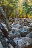 Hiking over the rocks in a dry river bed is hard work. To get somewhere you sometimes have to take the hard path. This river bed of rocks provided the best path Stock Photography
