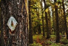 Hiking the pacific crest trail Stock Photo