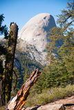 Hiking panaramic train in Yosemite Royalty Free Stock Images