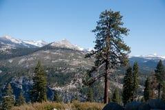 Hiking panaramic train in Yosemite Stock Image