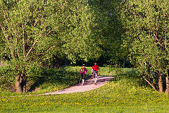 Hiking in the park Stock Photography