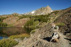 Hiking Past Lake Royalty Free Stock Photos