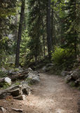 Hiking Path Stock Photos