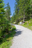 Hiking path Royalty Free Stock Photos
