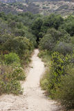 Hiking Path Royalty Free Stock Photography