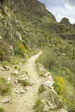 A hiking path Royalty Free Stock Photos