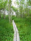 Hiking path Stock Photo
