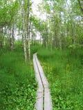 Hiking path Stock Photo