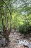 Hiking path Agia Irini Gorge Canyon, Crete, Greece Stock Photos