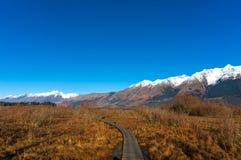 Hiking path along wild alpine vegetation Royalty Free Stock Images