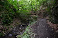 Hiking path along wild stream Brodenbach next to Mosel River Royalty Free Stock Photo