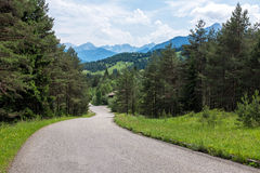 Hiking path in Alps. Bavaria Royalty Free Stock Image