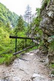Hiking path in the Austrian Alps Royalty Free Stock Photography