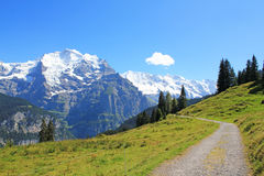 Hiking path with beautiful mountain panorama view with the famous Jungfrau in Switzerland. Beautiful mountain landscape with hiking path and view at the famous Stock Photography