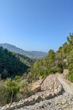 Hiking path in the beautiful nature of mallorca Royalty Free Stock Photos