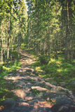 Hiking path Stock Photography
