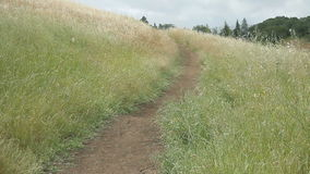 Hiking path on a grassy hill Stock Image