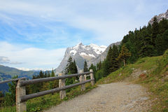 Hiking path from Kleine Scheidegg to the village Grindelwald Stock Image