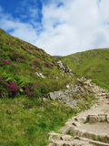 Hiking path. A path leading up Ben Nevis Royalty Free Stock Photography