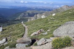 Hiking Path On Mount Evans, Colorado. This is an image of a hiking path on Mount Evans in Colorado stock images