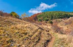 Hiking path on a mountain pasture Demerdzhi at fall season Royalty Free Stock Image
